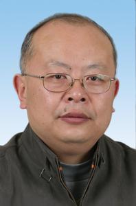 张建民 副秘书长